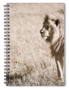 King Of Cats In Sepia Spiral Notebook