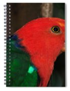 King Parrot - Male 2 Spiral Notebook