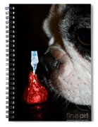 Kiss Me Cute Spiral Notebook