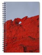 Kissing Camels On Fire Spiral Notebook