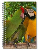 Kissy Kissy Mccaws Spiral Notebook