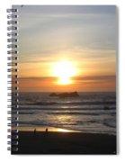 Kite Flying At Sundown Spiral Notebook