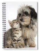 Kitten And Daxie-doodle Puppy Spiral Notebook