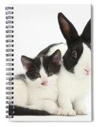 Kitten And Dutch Rabbit Spiral Notebook