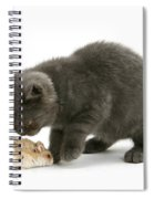 Kitten And Hamster Spiral Notebook