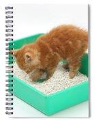 Kitten And Litter Tray Spiral Notebook