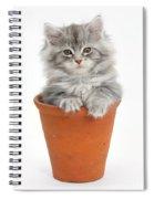 Kitten In Pot Spiral Notebook