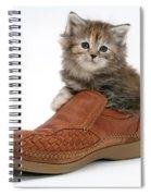 Kitten In Shoe Spiral Notebook