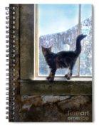 Kitten On Windowsill Of Abandoned House Spiral Notebook