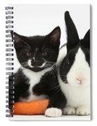 Kitten, Rabbit And Carrot Spiral Notebook