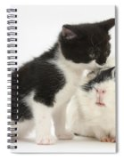 Kitten With Guinea Pig Spiral Notebook