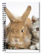 Kittens And Rabbit Spiral Notebook
