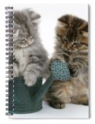 Kittens And Watering Can Spiral Notebook