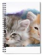 Kittens Under Blanket Spiral Notebook
