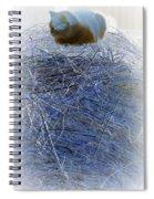 Kitty Blue Spiral Notebook