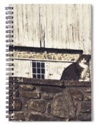 Kitty On Guard Spiral Notebook