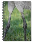 Knobby Knees Spiral Notebook