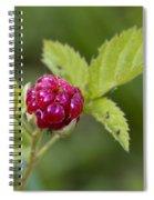 Knox Berry Farms Boysenberry Fruit Spiral Notebook