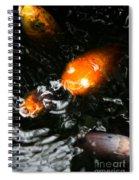 Koi Chorus Spiral Notebook