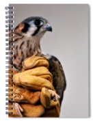 Krestrel Markings Spiral Notebook