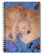 Lab Pups 2 Spiral Notebook