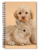 Labradoodle Puppy With Rabbit Spiral Notebook