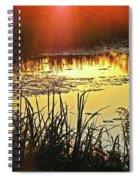 Lacassine Sundown Spiral Notebook