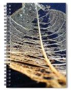 Lace Leaf 4 Spiral Notebook