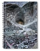 Lacey Lurker Spiral Notebook