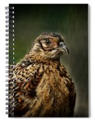 Lady Pheasant Spiral Notebook