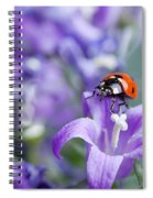 Ladybug And Bellflowers Spiral Notebook