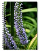 Lady's Mantel Spiral Notebook