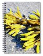 Lagoon Life Spiral Notebook