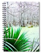 Lake Martin Swamp View Spiral Notebook