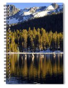 Lake Mary Golden Hour Spiral Notebook