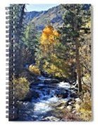 Lake Sabrina Creek Spiral Notebook