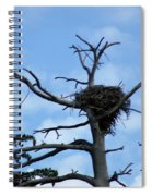 Lake Tahoe Eagle Nest Spiral Notebook