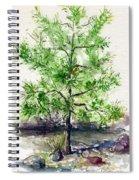 Lake Tahoe Tree Spiral Notebook