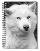 Lakota Spiral Notebook