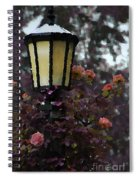 Lamp And Roses Spiral Notebook