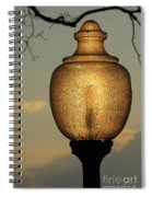 Lamp Light And Limb Spiral Notebook