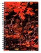 Land Of The Maple Spiral Notebook