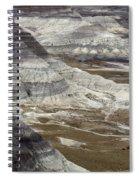 Landscape Petrified Forest Spiral Notebook