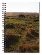 Landscape With Cow Grazing In The Field . 7d9935 Spiral Notebook
