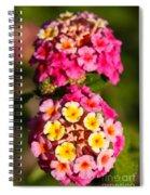 Lantana Camara Spiral Notebook