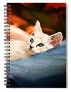 Lap Kitty Spiral Notebook