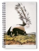 Large Tailed Skunk Spiral Notebook