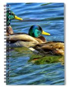 Larry Moe And Shirley Spiral Notebook