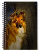 Lassie Lookalike Spiral Notebook