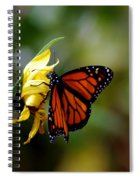 Last Kiss Of The Butterfly Spiral Notebook